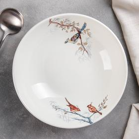 Тарелка суповая «Птицы», 330 мл, МИКС