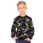 """Джемпер для мальчика """"Хищники"""", рост 128 см (64), цвет камуфляж ПДД397858н"""