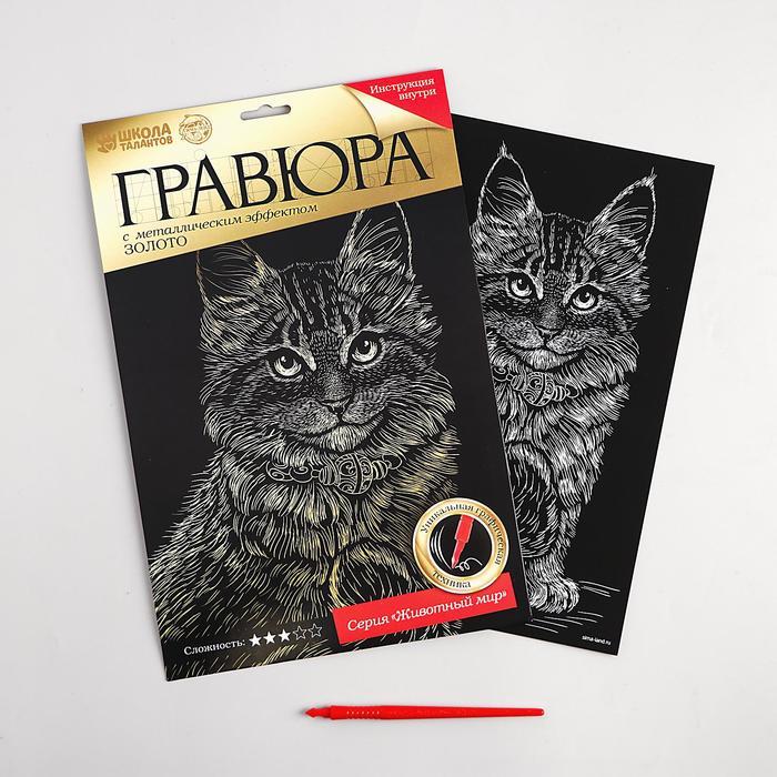 "Гравюра ""Котёнок мейн-кун"", металлический эффект ""золото"", 21 х 30 см"
