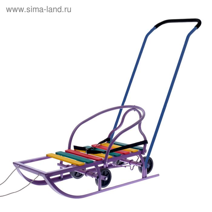 Санки «Вятские-4К+» фиолетовые