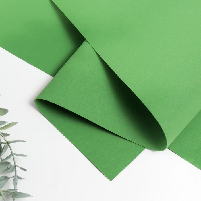 Фоамиран иранский 0,8-1 мм (тёмно-зелёный/179) 60х70 см - фото 422629
