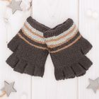 "Wool mittens for boys Collorista ""Leon"", size 14 (R-R MFR. 16*7 cm)"