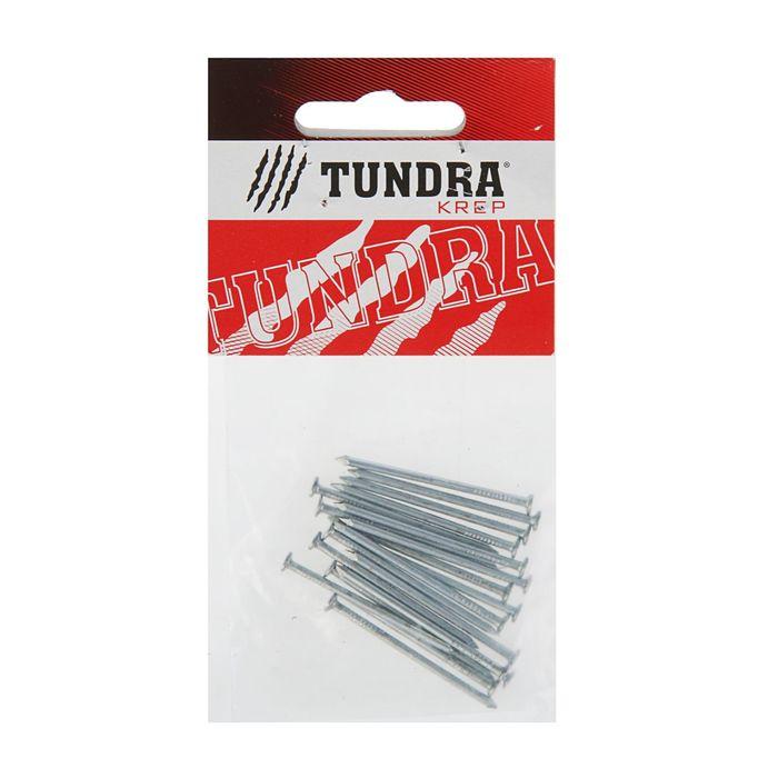 Гвоздь строительный TUNDRA krep, 2х40 мм, оцинкованный, в упаковке 20 шт.
