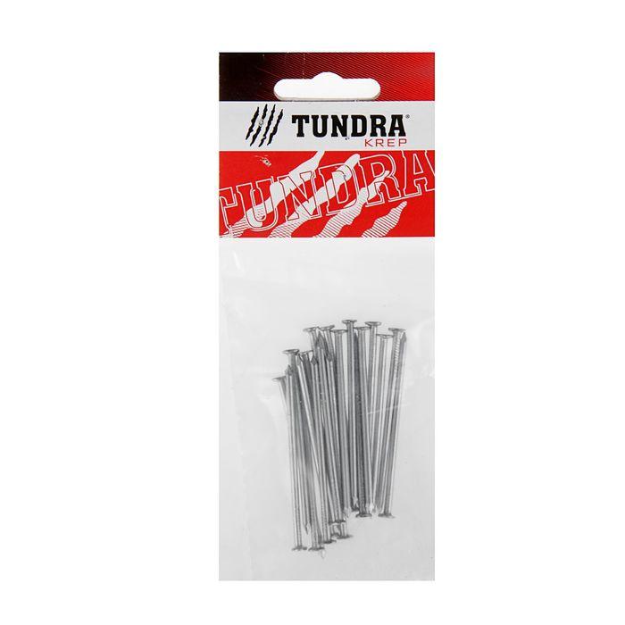 Гвоздь строительный TUNDRA krep, 2.5х60 мм, оцинкованный, в упаковке 20 шт.