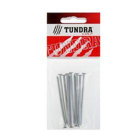 Гвоздь строительный TUNDRA krep, 3х70 мм, оцинкованный, в упаковке 10 шт.