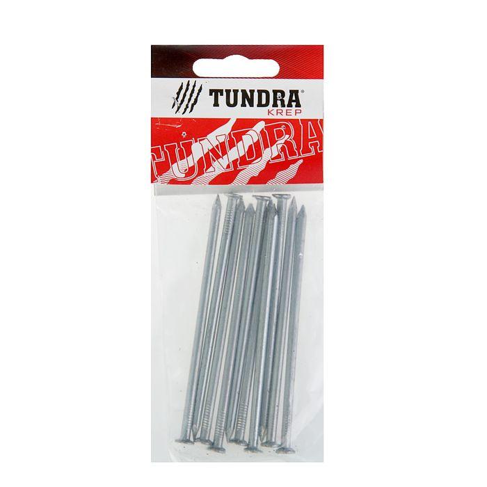 Гвоздь строительный TUNDRA krep, 4х100 мм, оцинкованный, в упаковке 10 шт.