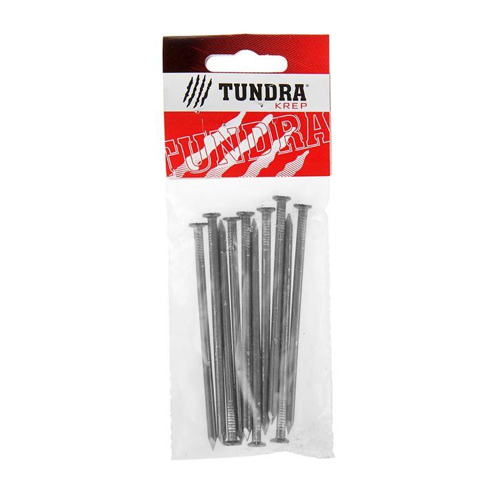 Гвозди строительные TUNDRA krep, 4х100 мм, без покрытия, 10 шт.