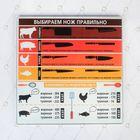 Многофункциональная кухонная доска «Подсказки для хозяйки», 20 × 20 см
