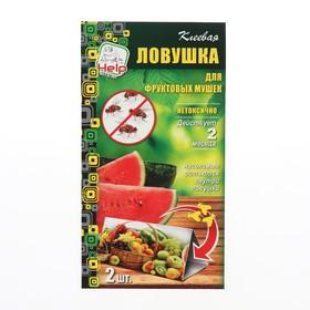 Клеевая ловушка от ФРУКТОВОЙ МУШКИ, 2 шт. в упаковке