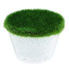 Основа для композиций с зелёным напылением d-6. h-5 см
