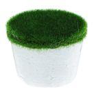 Основа для композиций с зелёным напылением 6,7*5 см