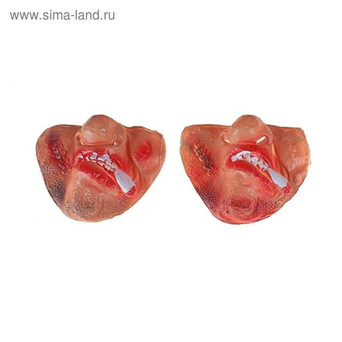 "Half mask latex different ""Teeth"" MIX"