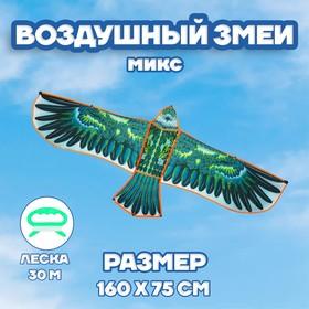 Воздушный змей «Орёл в полете», с леской, цвета МИКС