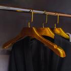Вешалка-плечики для одежды, размер 42-44, цвет золотой - фото 4642549