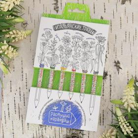 """Растущие карандаши """"Итальянские травы"""", набор 6 шт., цветные"""