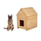 Будка для собаки, 80 х 60 х 100 см, деревянная, с крышей
