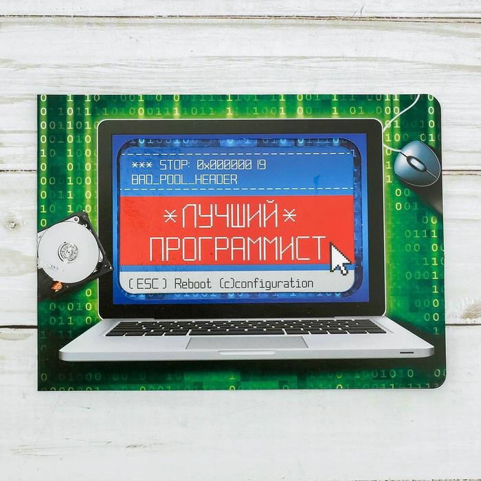"""Магнит в открытке """"Лучший программист"""""""