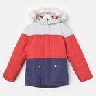 """Куртка для мальчика """"ТРОЯ"""", рост 110 см, цвет синий/красный/серый ДЗ-0039"""