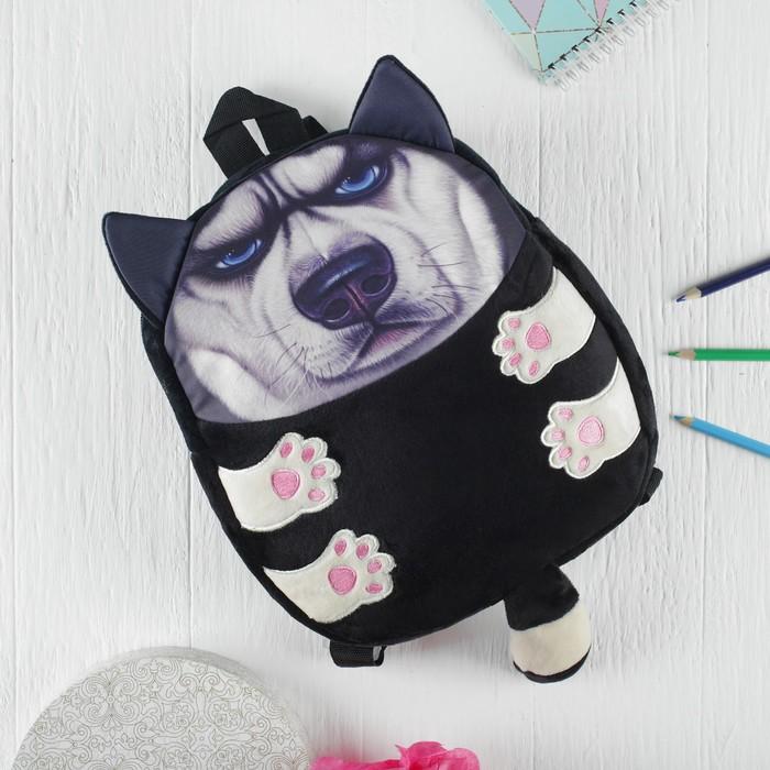 Мягкая игрушка-рюкзак «Серьезный пёсик», голубые глазки