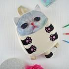 """Мягкая игрушка-рюкзак """"Котик"""" розовый носик и большие глазки"""