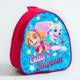Paw Patrol. Children's backpack