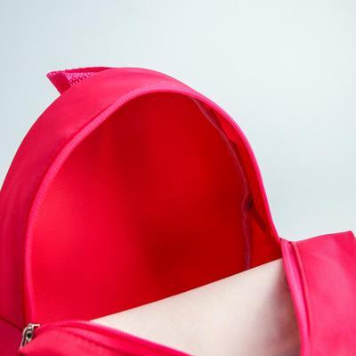 Щенячий патруль. Рюкзак детский «Скай и Эверест», 21 x 25 см