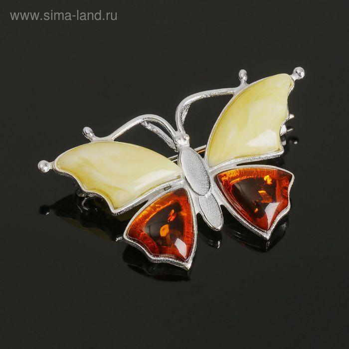 """Брошь """"Янтарь"""" бабочка малая в посеребрении 3004"""