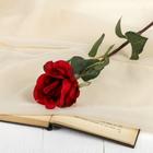 """Цветок искусственный """"Роза Фолли"""" 6*60 см, красная"""