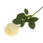 """Цветок искусственный """"Роза Боника"""" 9*7*75 см, белая"""