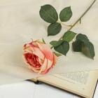 """Цветок искусственный """"Роза Леонардо"""" 9*8*55 см, нежно-розовая"""