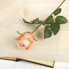 """Цветок искусственный """"Роза Фрау"""" 9*6*60 см, бело-розовая"""