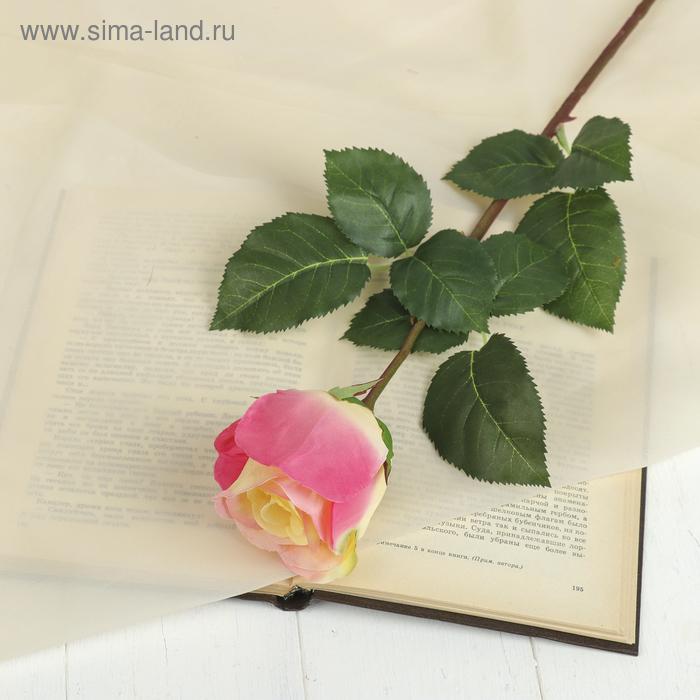 """Цветок искусственный """"Роза Мюнх"""" 9*7*60 см, жёлто-малиновая"""