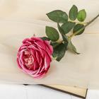 """Цветок искусственный """"Роза Пилгрим"""" 9*10*60 см, малиновая"""