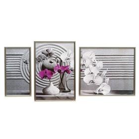 """Модульная картина в раме """"Орхидеи в вазах"""", 50×100 см, 28×40 — 2 шт., 44×50"""