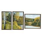 """Модульная картина в раме """"Природа"""", 50×100 см, 26×50, 30×50, 44×40"""