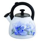 Чайник эмалированный 2,5 л, цвет МИКС