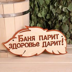 Табличка 2-слойная 'Баня парит здоровье дарит', 30х16см Ош