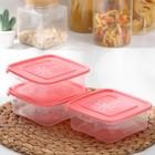 """Набор контейнеров для замораживания продуктов 0,7 л """"Морозко"""" 3 шт, цвет красный"""