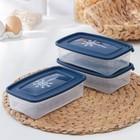 """Набор контейнеров для замораживания продуктов 0,7 л """"Морозко"""" 3 шт, цвет голубой"""