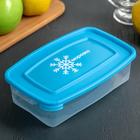 """Контейнер для замораживания продуктов """"Морозко"""" , прямоугольный, 0,7 л, цвет МИКС"""