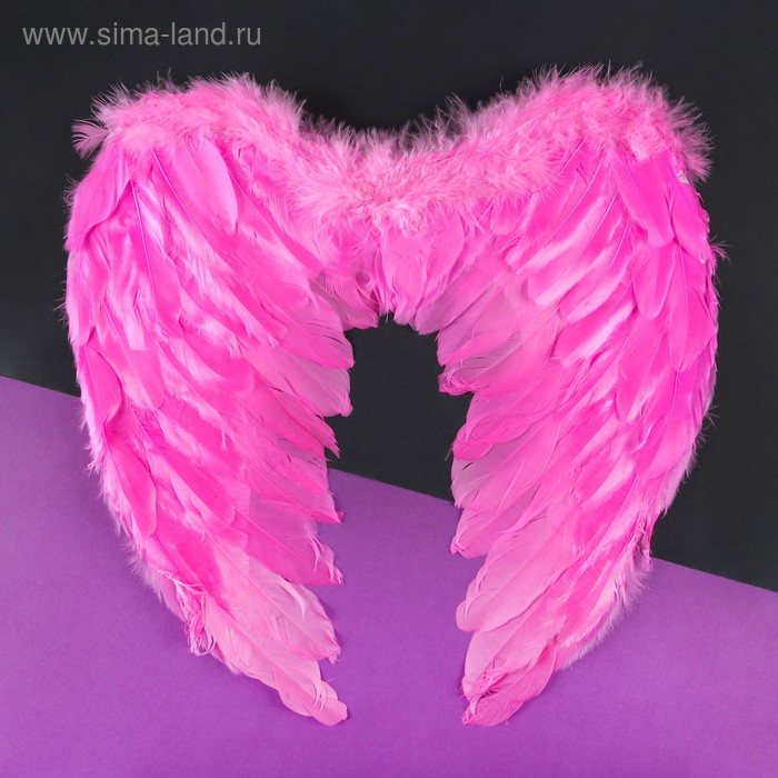 Angel wings, pink color