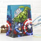 """Пакет ламинированный вертикальный """"С Днем рождения, супергерой!"""", Мстители, 23 х 27 х 11.5 см"""