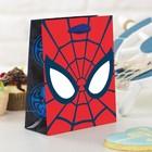 """Пакет ламинированный вертикальный """"Ты- супергерой"""", Человек-паук, 12 х 15 х 5.5 см"""