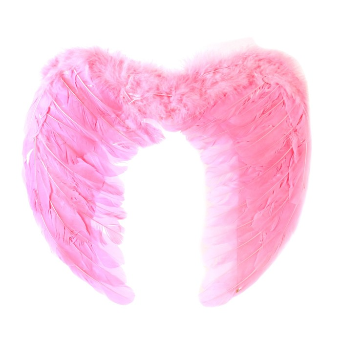 Крылья ангела, 55×40 см, розовые