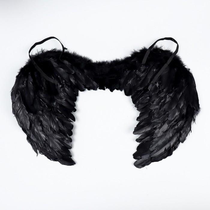 Angel wings, black