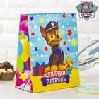 """Щенячий патруль. Пакет подарочный """"Счастливый День Рождения"""", 23 х 27 х 11,5 см"""