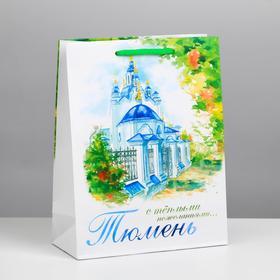 Пакет подарочный МS «Тюмень» в Донецке