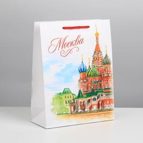 "Package vertical MS ""Moscow"", 18 x 23 x 8 cm"