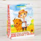 Пакет вертикальный МС «Беларусь»