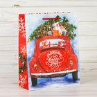 Пакет ламинированный с открыткой «Счастье нового года», 18 × 23 × 8 см